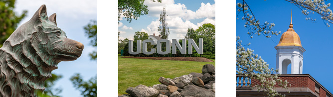 UConn photo examples for social avatars